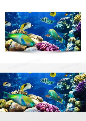 蓝色海底世界背景