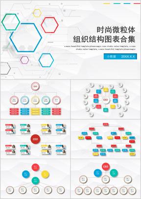 公司组织架构图表集合PPT模板
