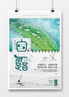 白色白露二十四节气清新创意海报