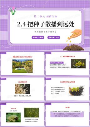 教科版四年级下册把种子散播到远处课件PPT模板