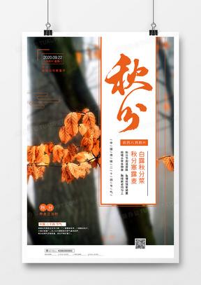 简约二十四节气之秋分创意海报