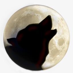 狼twilight Desktop Iconspng图片素材免费下载 Png格式 256 256像素 熊猫办公